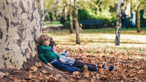 Forest schools en France : où trouver une école en forêt ?