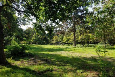 Forêt de Vincennes