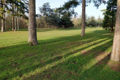 Bois de Boulogne - Boulogne