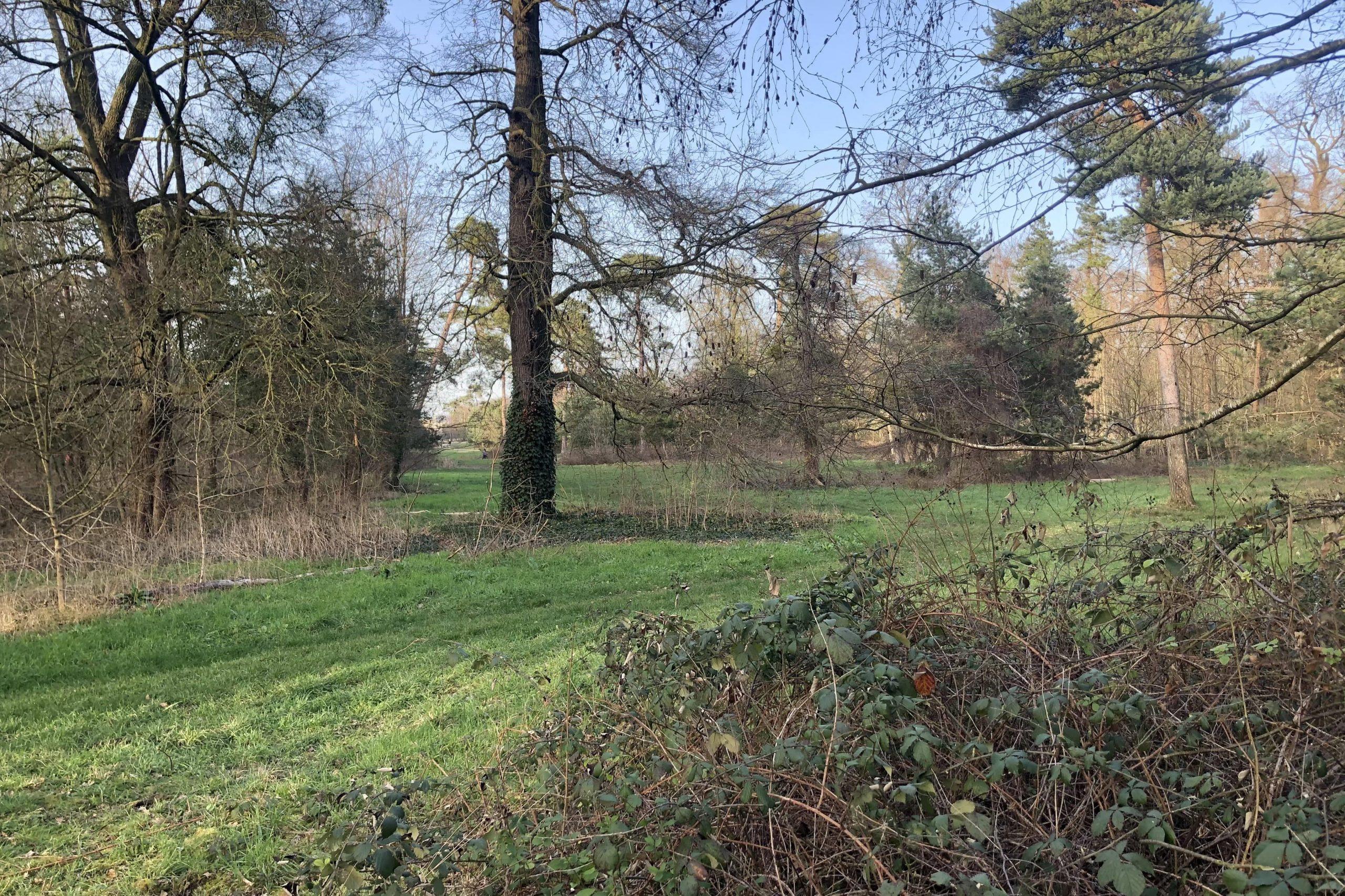 Bois de Vincennes - Charenton