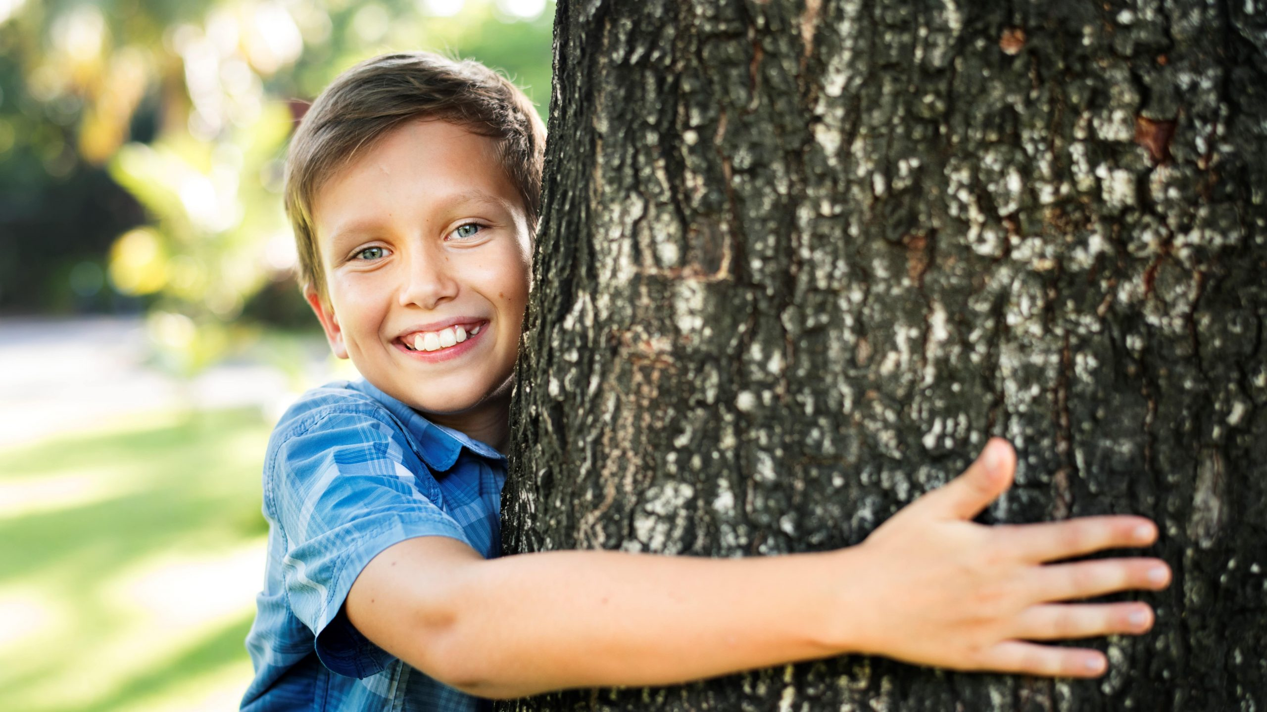 Les Etats-Unis, aux origines des forest schools