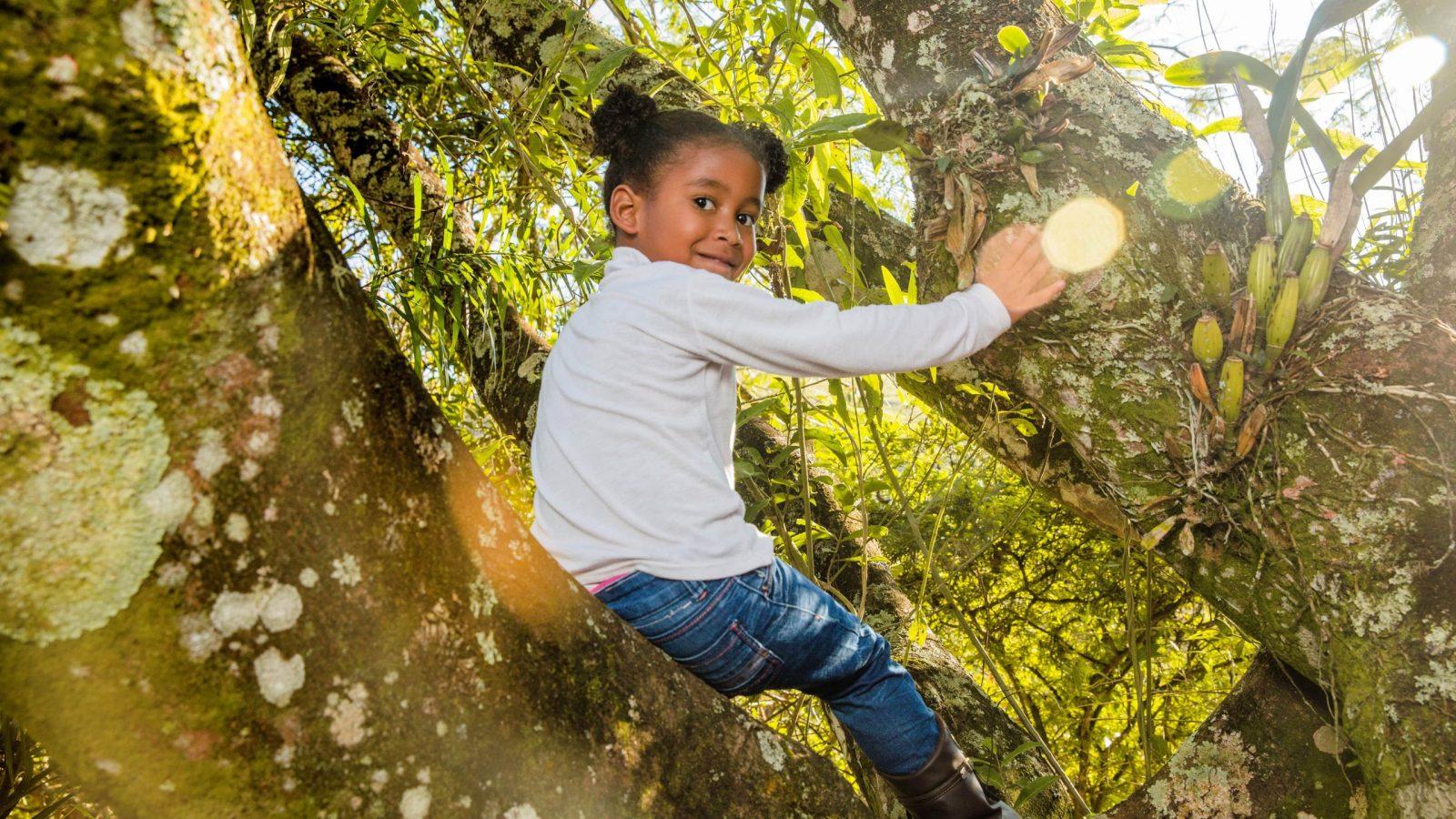 Les forest schools au Royaume-Uni, une vraie institution