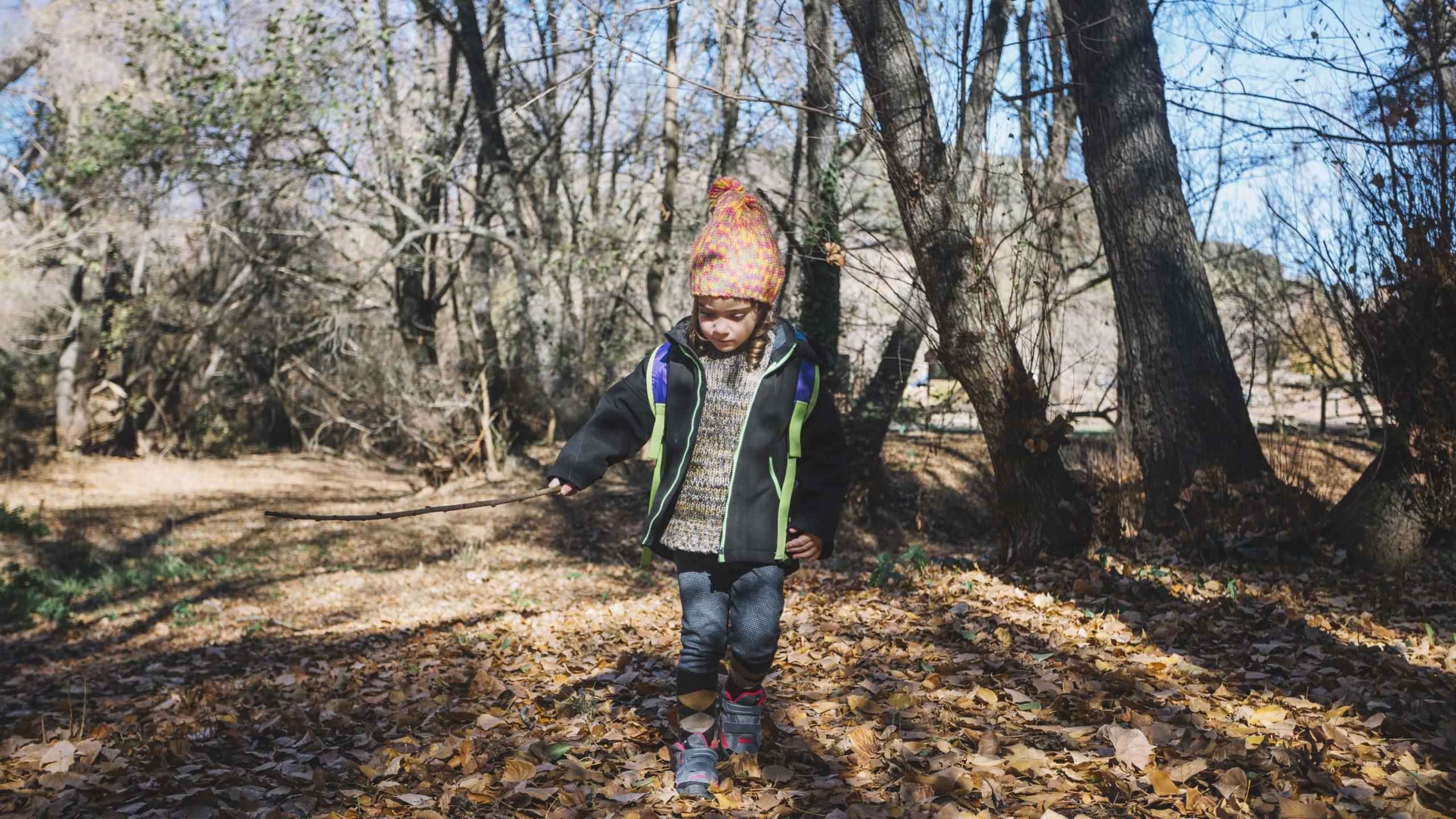 You are currently viewing Forest schools au Danemark : une philosophie de vie