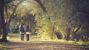 Read more about the article Les activités pour enfants au bois de Vincennes